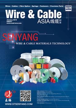 WCA January 2019 cover